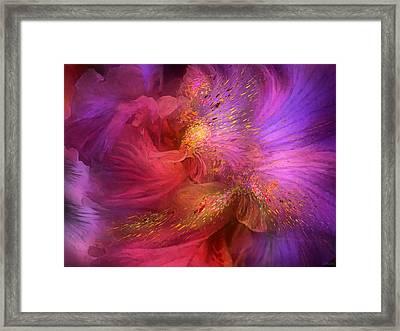 Orchid Moods Framed Print