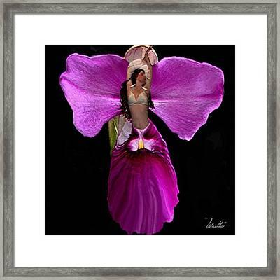 Orchid Framed Print by Andrea N Hernandez
