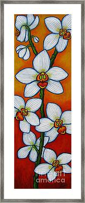 Orchid Oasis Framed Print by Lisa  Lorenz