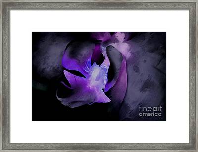 Orchid Of Faith Framed Print by Krissy Katsimbras