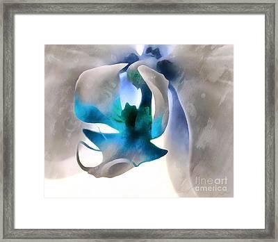 Orchid Of Hope Framed Print