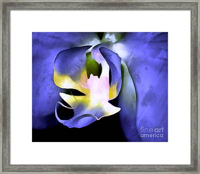 Orchid Of Life Framed Print