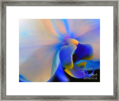 Orchid Of Radiance Framed Print by Krissy Katsimbras