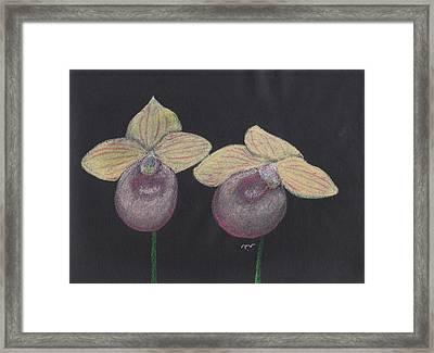 Orchid-paphiopedilum Fanaticum Framed Print