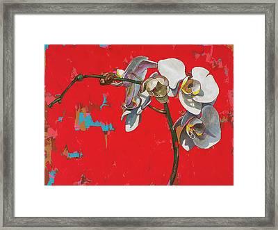 Orchids #1 Framed Print