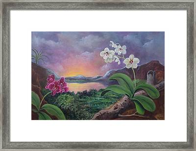 Orchids And Mystery Framed Print