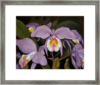 Framed Print featuring the painting Orchids by Donelli  DiMaria