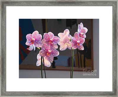 Framed Print featuring the photograph Orchids by Erik Falkensteen