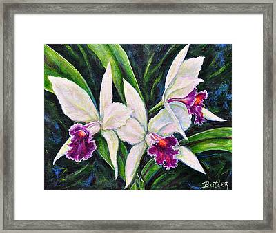 Orchids Framed Print by Gail Butler