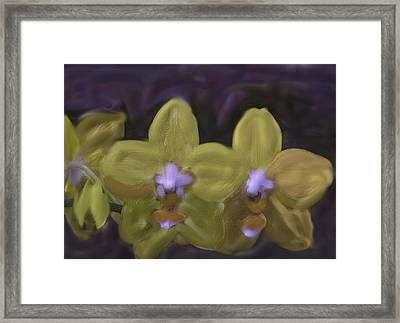 Framed Print featuring the digital art Orchids Golden by The Art of Alice Terrill