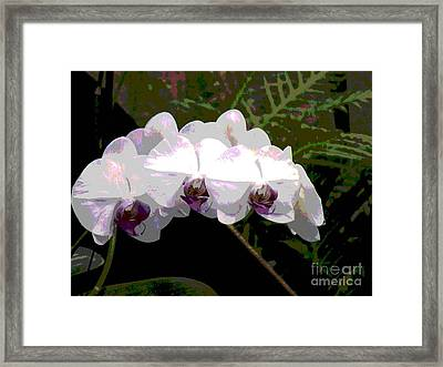 Framed Print featuring the photograph Orchids Impressionistic by The Art of Alice Terrill