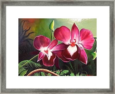 Orchids In The Night Framed Print