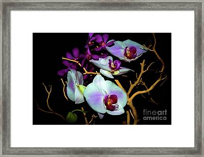 Framed Print featuring the photograph Orchids In Water Color by Diana Mary Sharpton