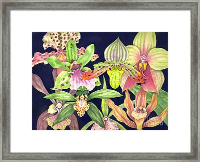 Orchids  Framed Print by Lucy Arnold