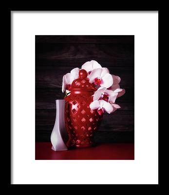 Phalaenopsis Framed Prints
