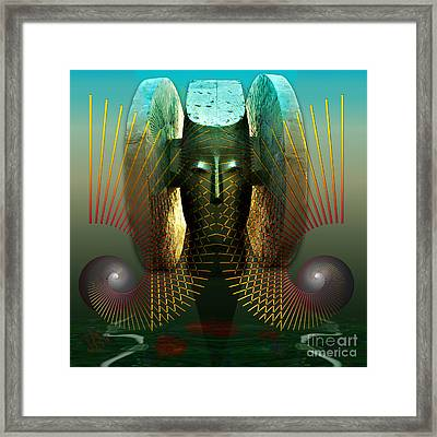 Order And Serenity Framed Print