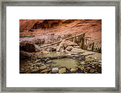Orderville Canyon Zion National Park Framed Print by Scott McGuire