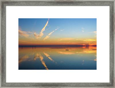 Or'dinaire Framed Print by Thierry Bouriat