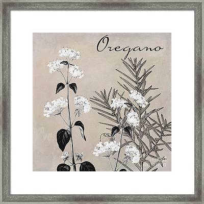 Oregano Flowering Herb Framed Print by Mindy Sommers