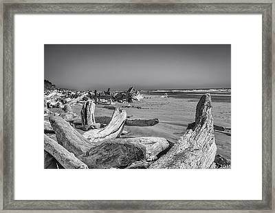 Oregon Beach Driftwood Framed Print