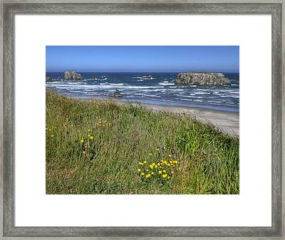 Framed Print featuring the photograph Oregon Beauty by Wanda Krack
