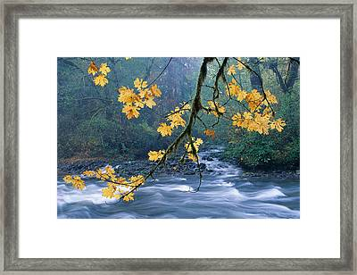 Oregon, Cascade Mountain Framed Print by Carl Shaneff - Printscapes