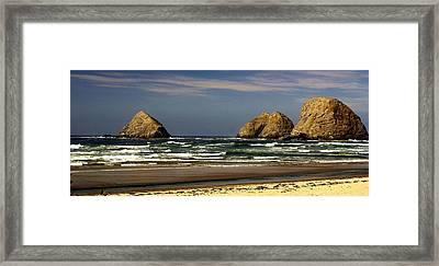 Oregon Coast 14 Framed Print by Marty Koch