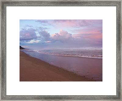 Oregon Coast 14 Framed Print