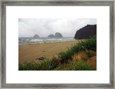 Oregon Coast 2 Framed Print by Marty Koch