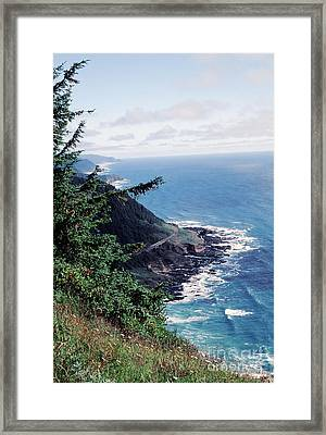 Oregon Coast 2 Framed Print