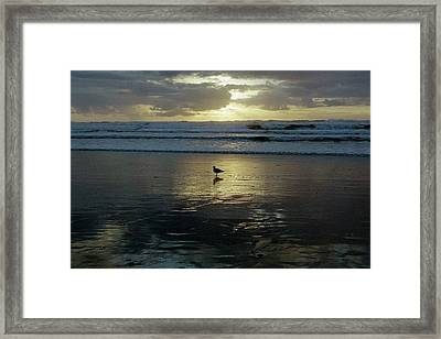 Oregon Coast 3 Framed Print