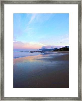 Oregon Coast 4 Framed Print