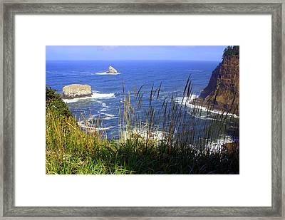 Oregon Coast 4 Framed Print by Marty Koch