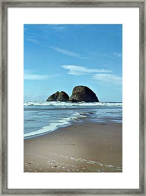Oregon Coast 8 Framed Print
