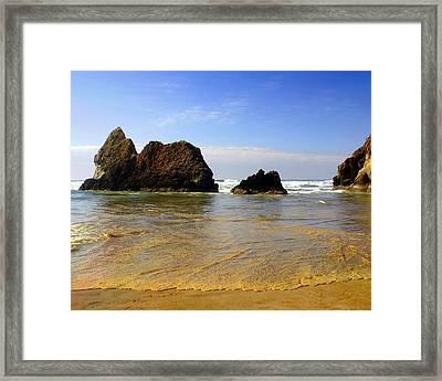 Oregon Coast 9 Framed Print by Marty Koch