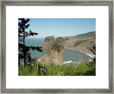 Oregon Coast Near Brookings Framed Print