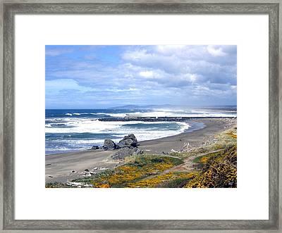 Oregon Coast Framed Print by Will Borden