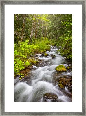 Oregon Creek Framed Print by Darren White