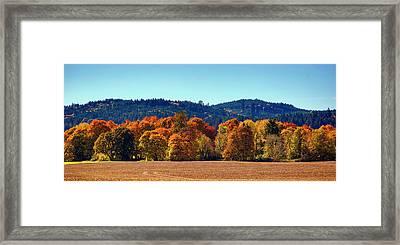 Oregon Fall Framed Print