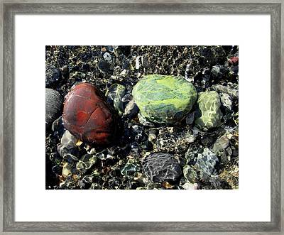 Oregon Jasper #1 Framed Print