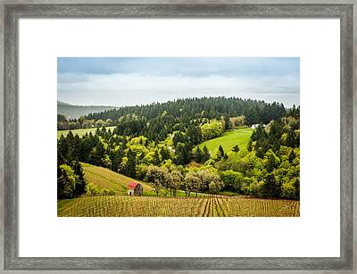 Oregon Wine Country Framed Print by TK Goforth