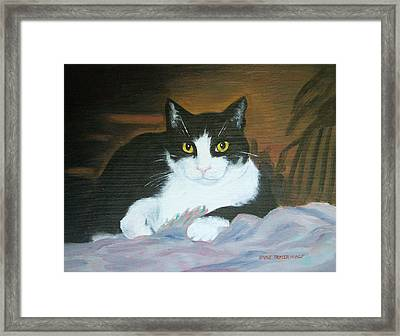 Oreo Framed Print by Anne Trotter Hodge