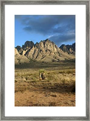 Organ Mountain Sundown Framed Print