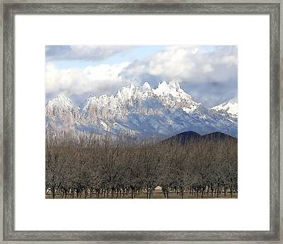 Organ Mountains In Snow Framed Print by Elaine Frink