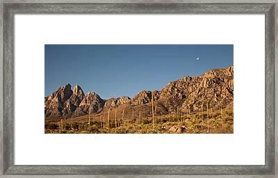Organ Mountans At Sunrise-3 Framed Print