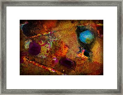 Organic Abstract 11 Framed Print