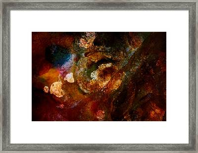 Organic Abstract 13 Framed Print