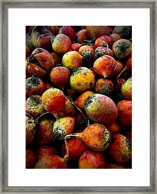 Organic Beets Framed Print