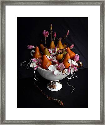 Organic Bosc Pears And Magnolia Blossoms Framed Print