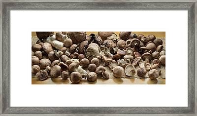 Organic Fresh Mushrooms Framed Print